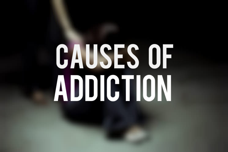 causes of drug addiction essay << essay help causes of drug addiction essay